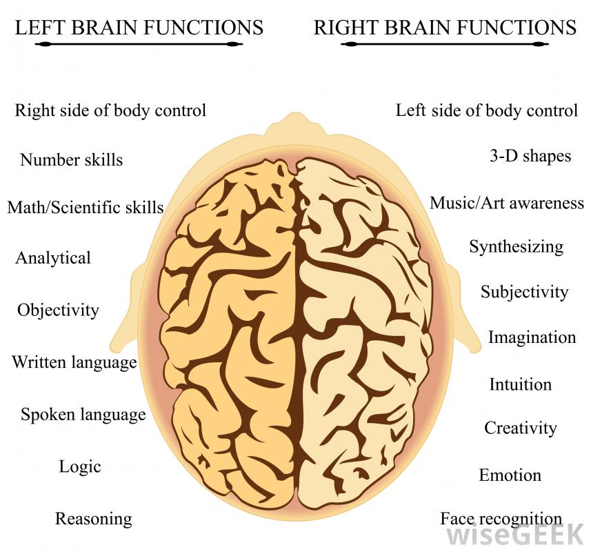 Does reading improve brain function picture 2